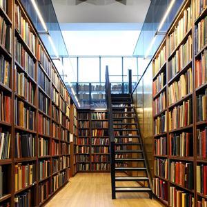 Библиотеки Любима
